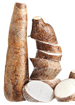 Piping Rock Yucca Root Supplements
